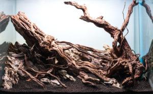 aquarium driftwood hardscape