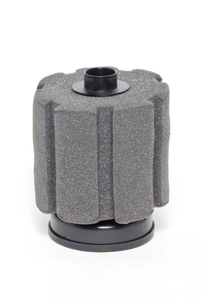 Freshwater aquarium sponge filter