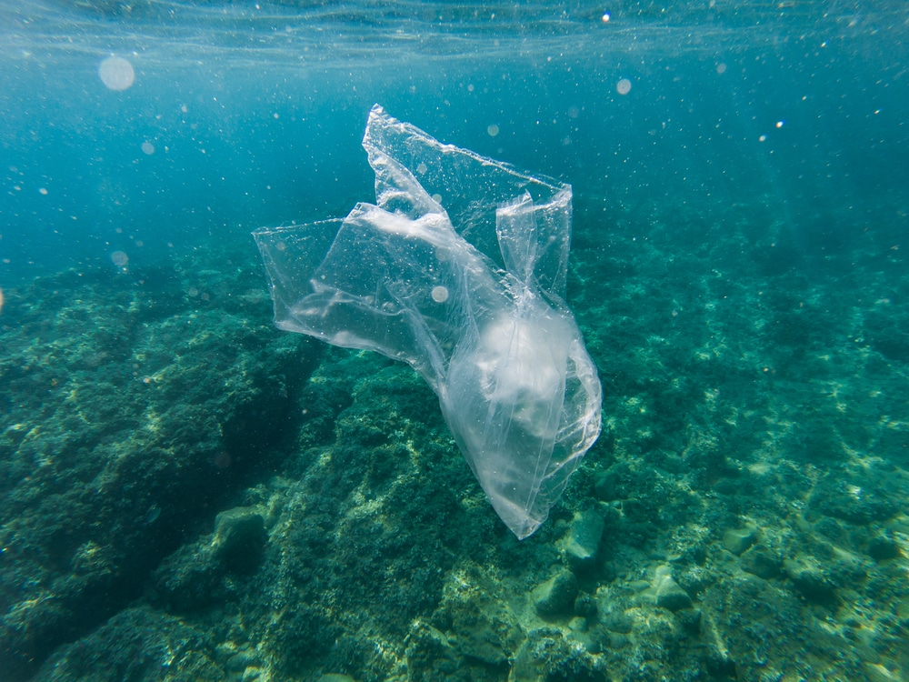 plastic bag in ocean pollution