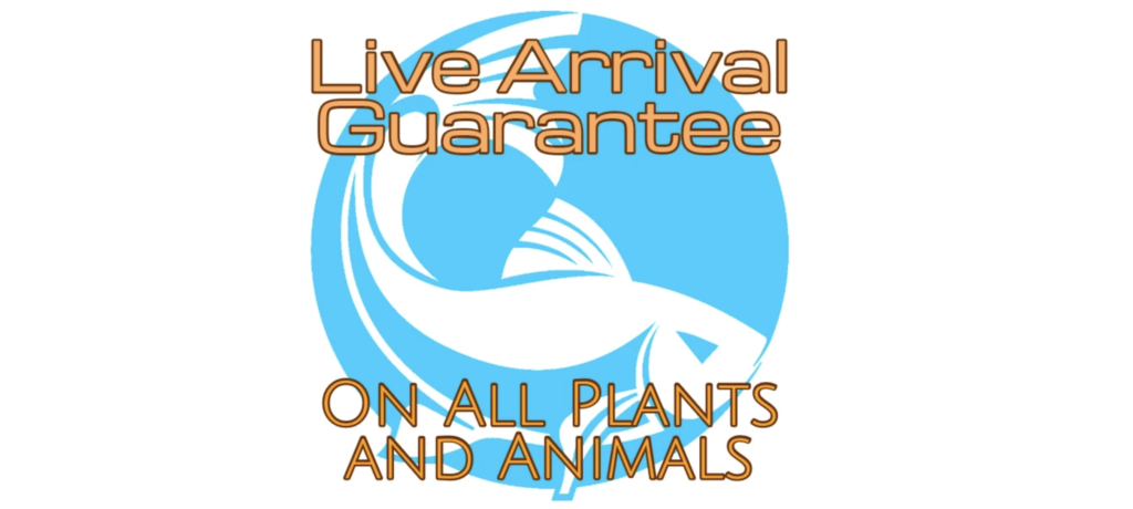aquaticarts live guarantee