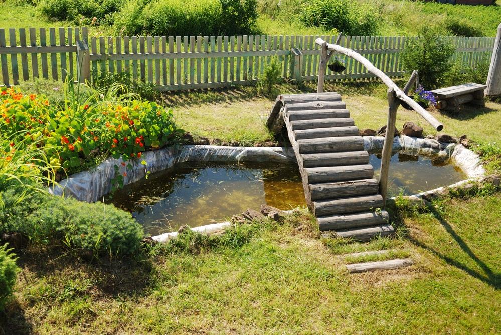 small garden koi pond